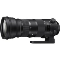 Sigma 150-600mm f/5-6.3 DG OS HSM Sport for Canon