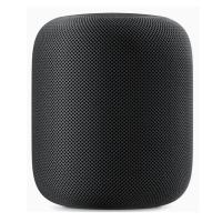 Apple HomePod Space Grey (MQHW2)