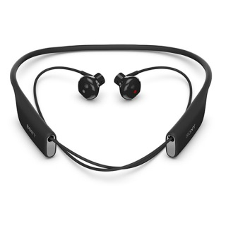 Фото - Sony SBH70 (Black) (US)