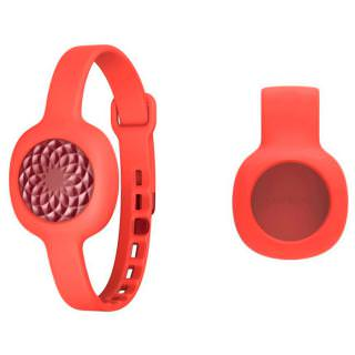 Фото - Jawbone UP Move Wireless Activity Sleep Tracker with Clip and Strap Ruby Rose (US)