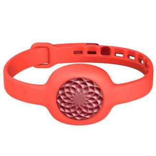 Фото - Jawbone UP Move Wireless Activity Tracker Ruby Rose (US)