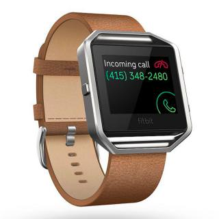 Фото - Fitbit Blaze Luxe Accessory Band (FB159LBCMS)