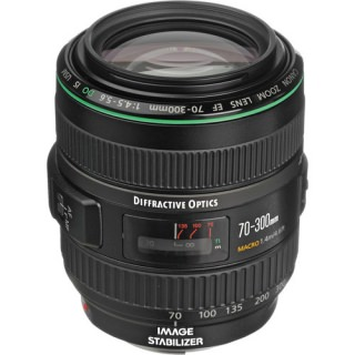 Фото - Canon EF 70-300mm f/4.5-5.6 DO IS USM (US)