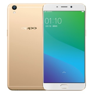 Фото - OPPO R9S Plus 6/64GB Gold