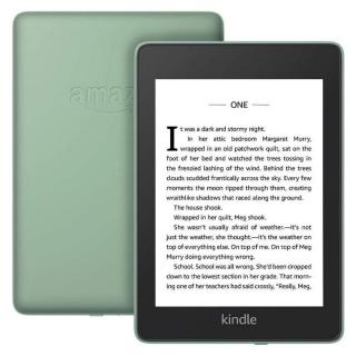 Фото - Amazon Kindle Paperwhite 10th Gen. 8GB Sage